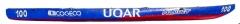 100 - UQAR - Nordet